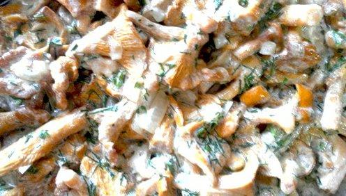 Как делать торт из коржей рецепт пошагово